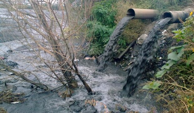 Водоемы Киева ждет экологическая катастрофа