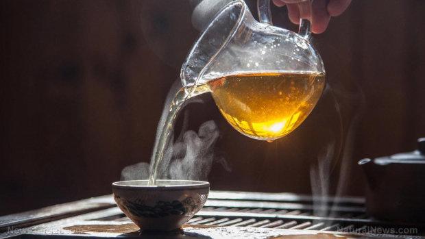 Онкологи умоляют не пить горячий чай, и вот почему