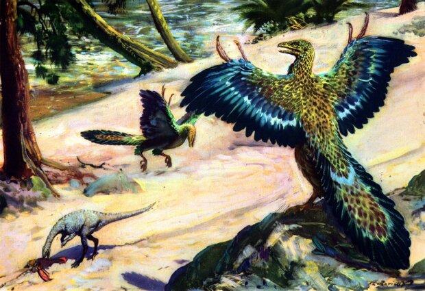 Археоптерикс, иллюстрация художника