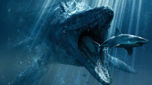 Океан выплюнул на берег загадочное чудовище, похожее на мозг: жуткие кадры
