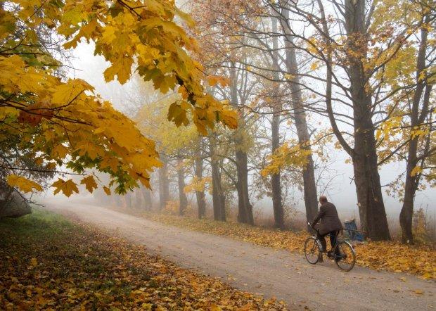 Прогноз погоды на неделю: лютые морозы и летнее тепло разделят украинцев