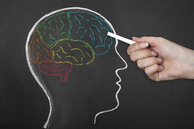 Четыре лучших совета по омоложению мозга
