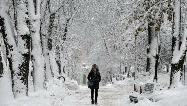 Зима, прогулка