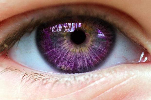 Вікна душі: як формуються людські очі