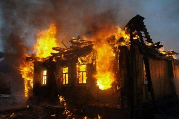 Івано-Франківщина у вогні: пожежі накрили область, рятувальники збиваються з ніг