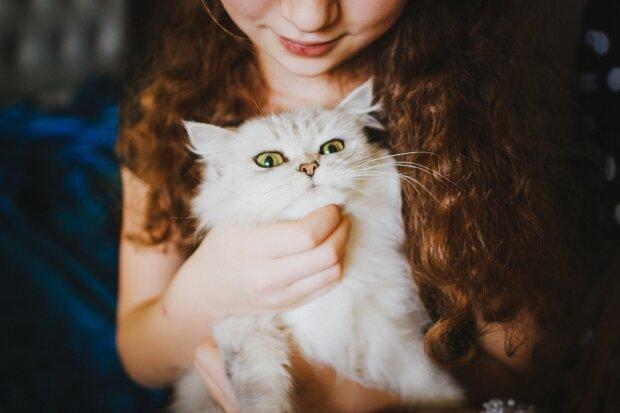 кошка на руках девушки, фото Pxhere