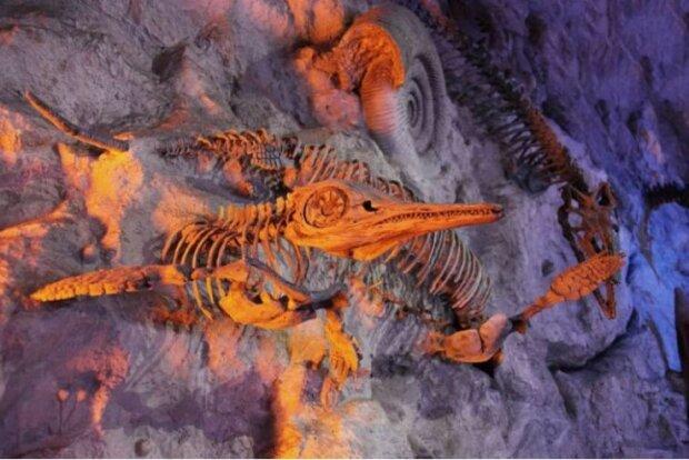 Окаменелости летающих динозавров, фото: Science Daily