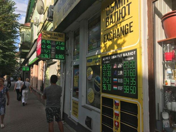 Курс валют на 14 червня: долар видерся нагору