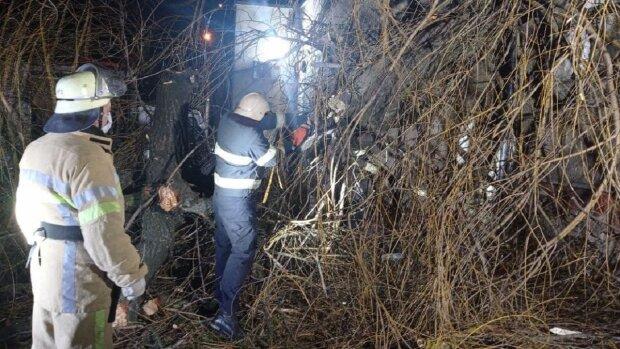 В Черновицкой области упало дерево: cv.dsns.gov.ua