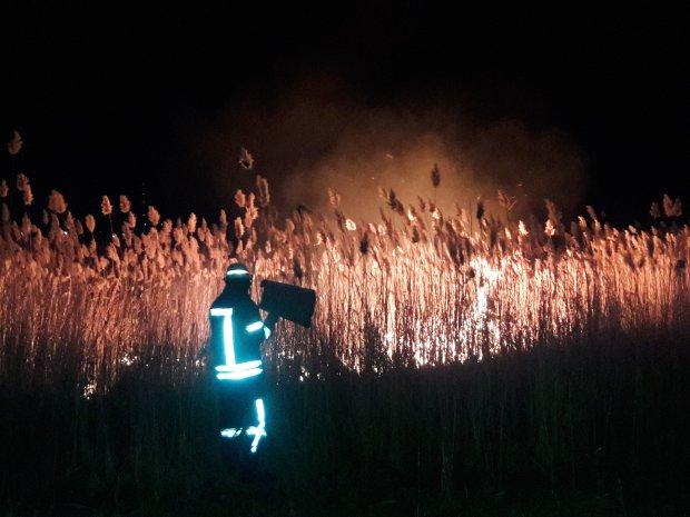 Пекельне полум'я пожирає військовий полігон, вогонь поглинув півміста: фото