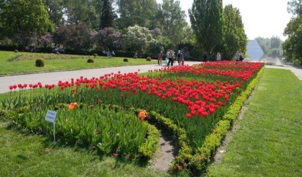 На месте Русановского канала появится  ботанический сад