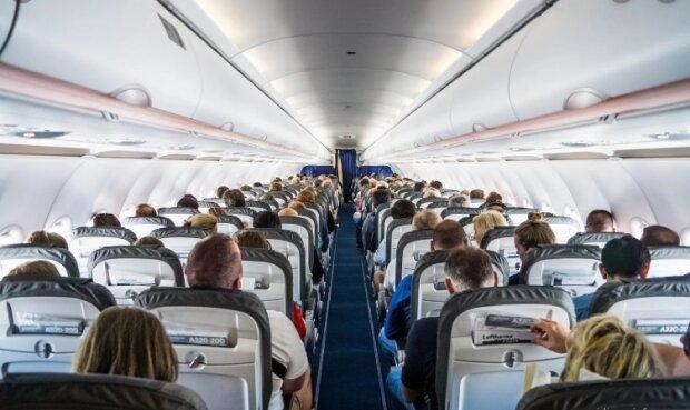 Салон самолета, фото: ua.news