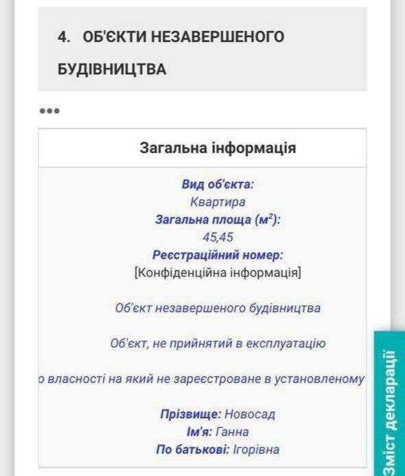 Декларация Анны Новосад, скриншот: declarations.com.ua
