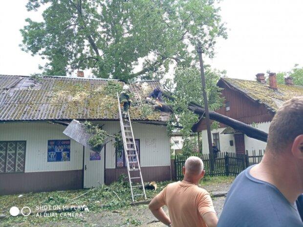 Буковиною пронісся надпотужний ураган - диявольський вітер, повалені дерева і річки замість вулиць