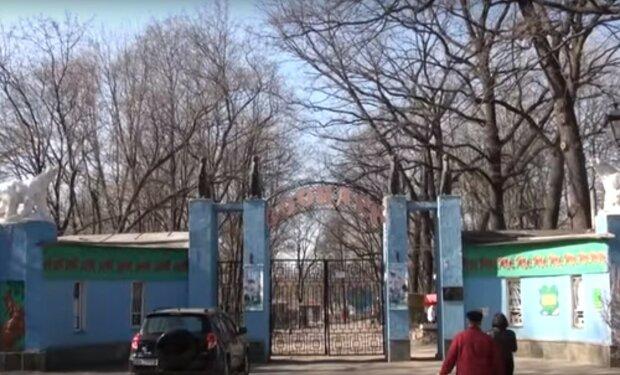 Харьковский зоопарк, скриншот из видео