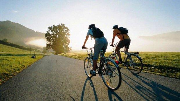 Гірші за тарганів: водії повстали проти велосипедистів