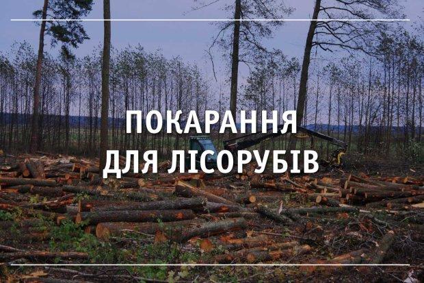 Українських лісорубів жорстоко розстріляли, за діло