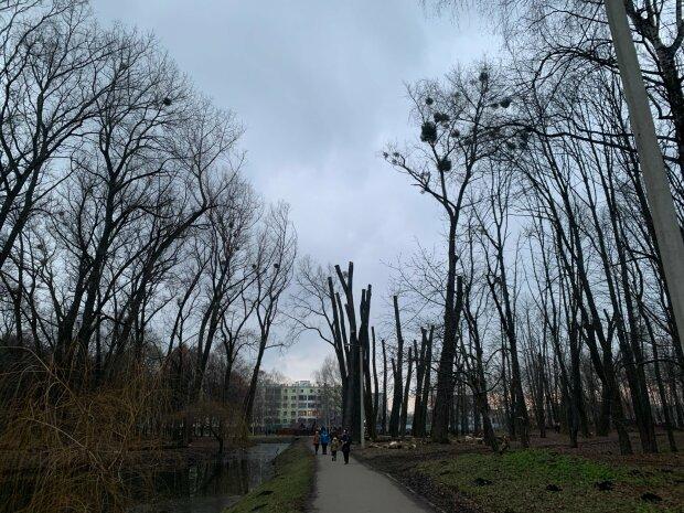 Парк / фото: Афіна Черкезова