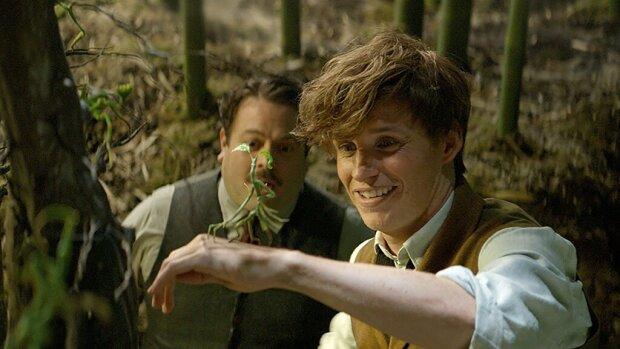 Фантастические звери вселенной Гарри Поттера: BBC снимет шоу о реальных удивительных животных из книг Роулинг