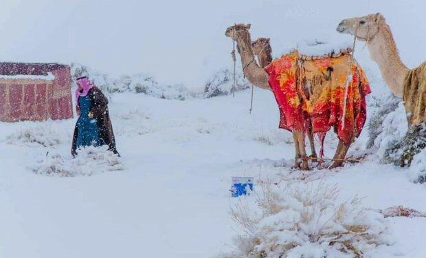 В Сахаре выпал снег, фото: TheSun