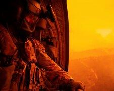 лесные пожары в Австралии, фото из свободных источников