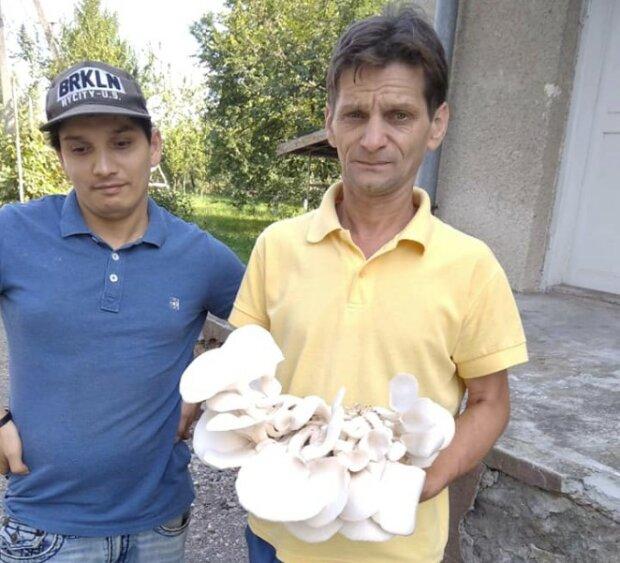 В доме пожилых людей выращивают шампиньоны, фото с Фейсбук