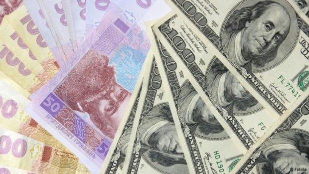 Сегодня доллар покупают по 24,5 гривен