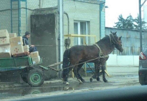 """Співробітників """"Нової Пошти"""" пересадили на коней і підірвали мережу: """"Швидко і надійно"""""""
