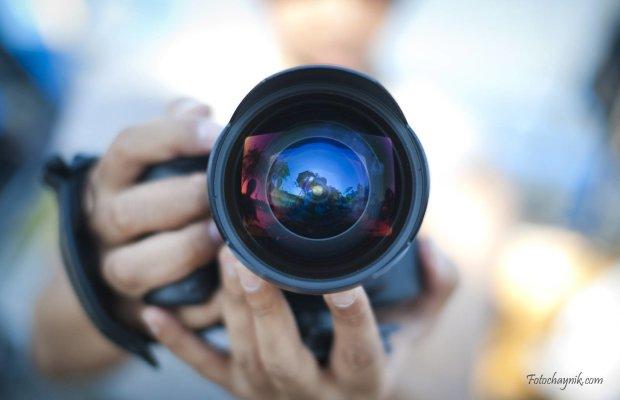 Названы победители конкурса BigPicture Natural World Photography: снимки, пробирающие до самого сердца