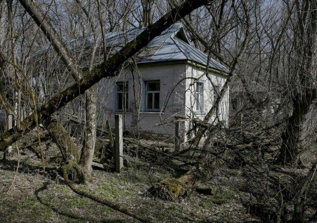 Огромные 4-х метровые норы и сорванный пол: в заброшенном доме зоны ЧАЭС обнаружили шокирующую находку