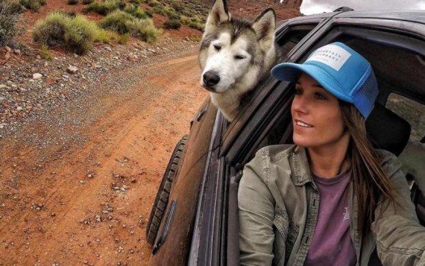 За кордон з улюбленцем: влада ускладнила життя навіть тваринам