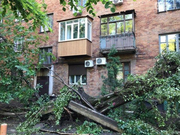 Мощная стихия обесточила родной город Зеленского: люди страдают вторую неделю