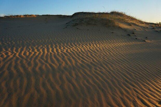 Олешковские пески, Wikimedia Commons