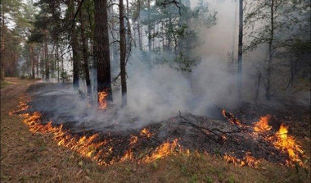 Рятувальники оприлюднили відео пожежі в Чорнобилі