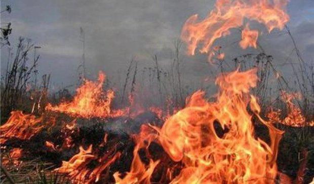 Чрезвычайную пожарную опасность объявили в Украине из-за жары
