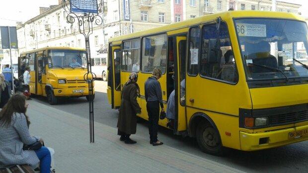 """В Тернополе дерзкий маршрутчик """"смял"""" пенсионерку, копы ищут свидетелей: """"Кто видел?"""""""