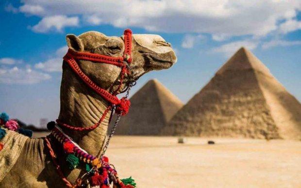 Шара закончилась: Египет взвинтит цены до небес