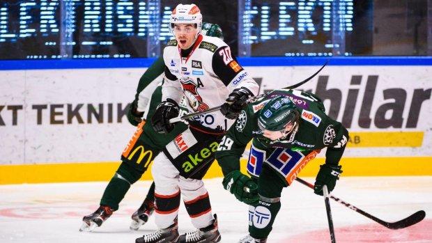 Шведские хоккеисты устроили ледовое побоище: видео