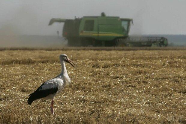 Мораторий на землю в Украине 2019: что это такое и как продать землю