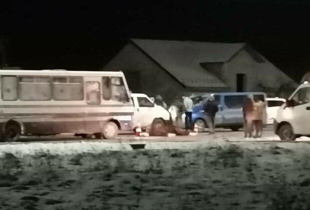 """Рейсовый автобус сбил лошадь, фото """" Буск онлайн"""""""