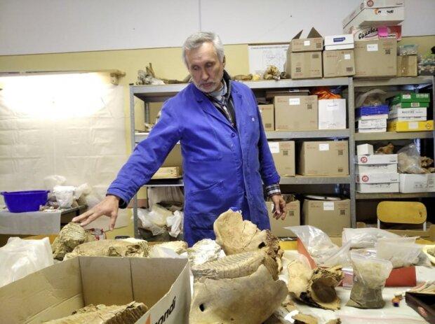 """На Буковине нашли древнего гиганта, ученые ошеломлены: """"Ему 300 тысяч лет"""""""