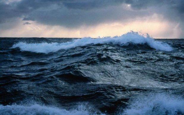 На пакет схожа: камера показала, хто проживає на дні океану