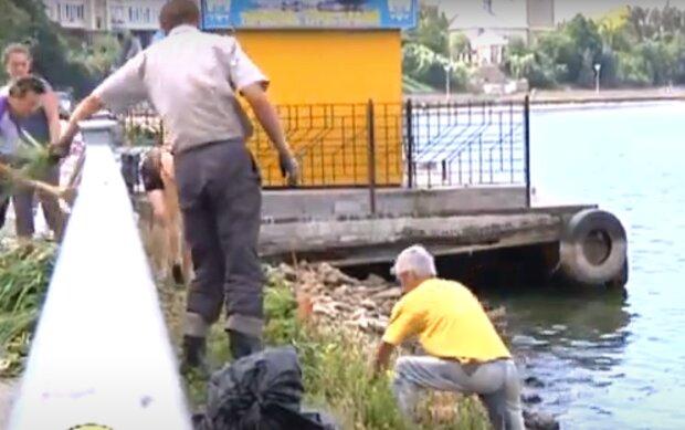 У Тернополі виявили десятки тіл - плавають животами до верху, не для слабкодухих