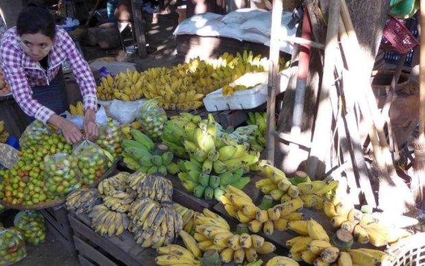 В Японии вывели банан для лентяев