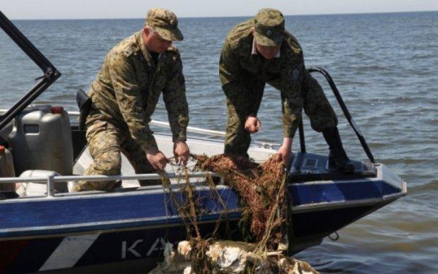Великий улов: браконьєри наловили риби на десятки тисяч