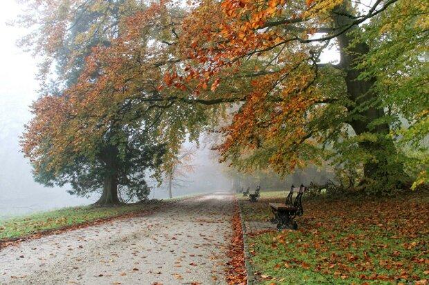 Днепряне, самое время утеплятся: синоптики рассказали о погоде на 29 октября
