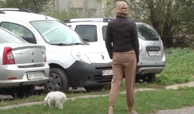 Во Франковске травят собак, кадр из репортажа канала 112: YouTube