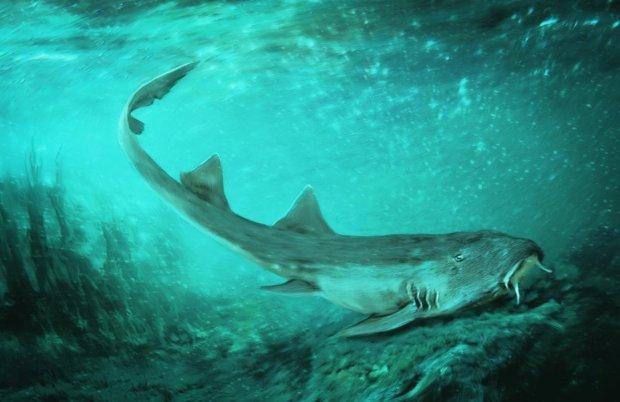 Ужасный монстр объявил охоту на людей: один из самых опасных видов на Земле живет на дне реки