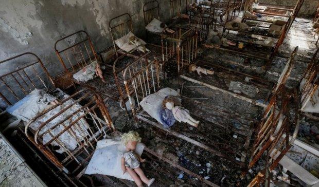 В Чернобыльской зоне увидели невероятное: уникальные кадры со скрытой камеры
