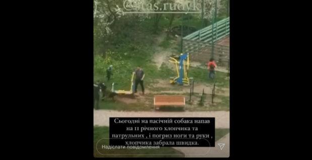 """У Франківську скажена тварюка вчепилася в дитину і покусала копа: """"Аж кросівки позлітали!"""""""
